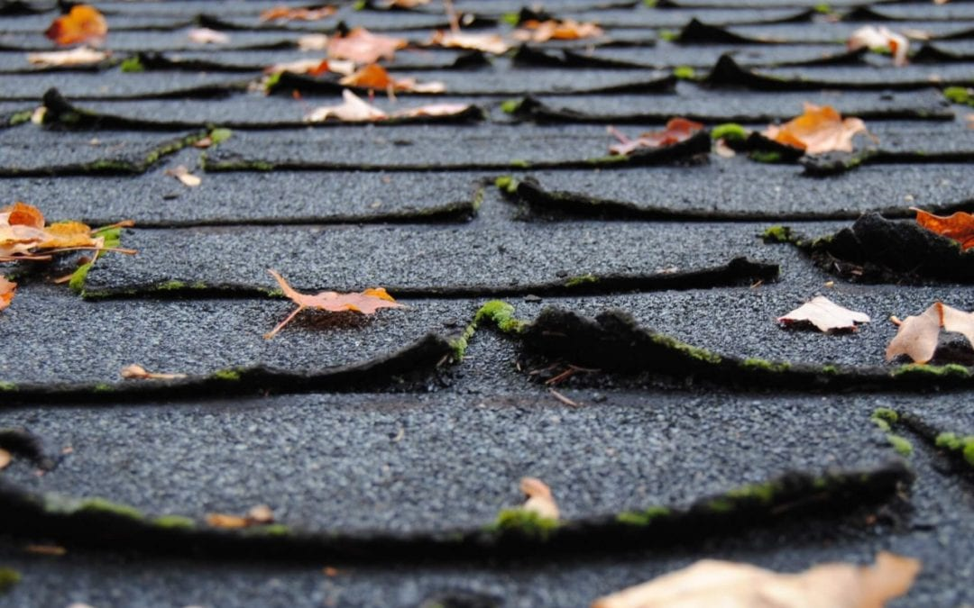 curling shingles are signs you need a new roof
